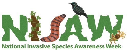 National Invasive Species Awareness Week logo (image credit: NISAW)