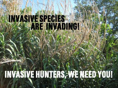 Wanted: Invasive species - Needed: Invasive Hunters to protect our native ecosystems!