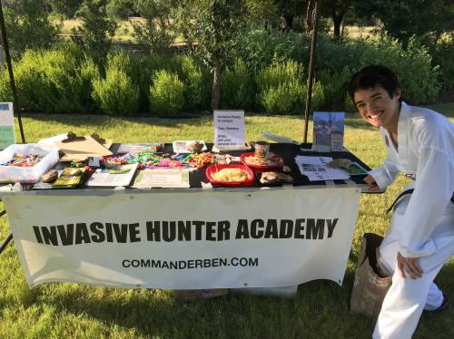 Setting up the Invasive Hunter Academy with samples of edible invasive plant species